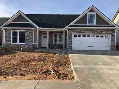 Spartanburg Single Family Home For Sale: 650 Cub Branch Drive Lot 70