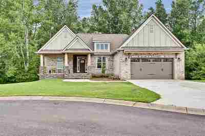 Greenville Single Family Home For Sale: 55 Park Vista Way