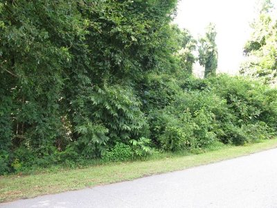 Spartanburg Residential Lots & Land For Sale: 200 Watervale Dr