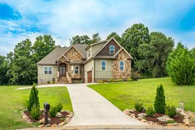 Inman Single Family Home For Sale: 534 Laurel Crest Dr