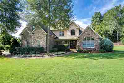 Simpsonville Single Family Home For Sale: 59 Sycamore Ridge Drive