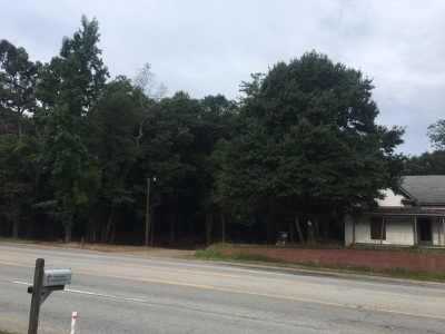Spartanburg Residential Lots & Land For Sale: 2863 Chesnee Hwy