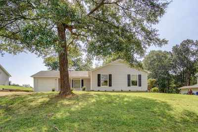 Spartanburg Single Family Home For Sale: 317 Foxborough Rd