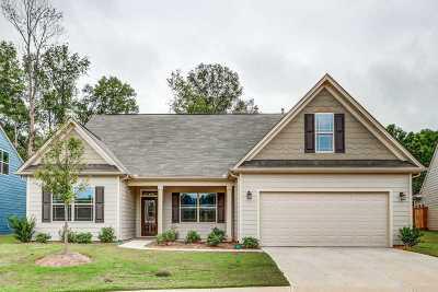 Simpsonville Single Family Home For Sale: 205 Nearmeadows Way