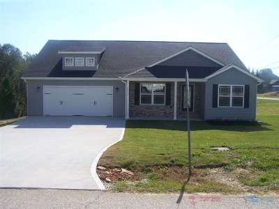 Greer Single Family Home For Sale: 3879 Camp Road