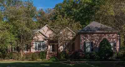 Spartanburg Single Family Home For Sale: 603 Cinnabar Court