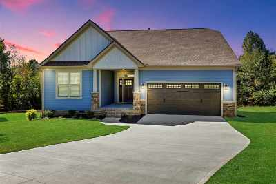 Travelers Rest Single Family Home For Sale: 409 Skyway Place