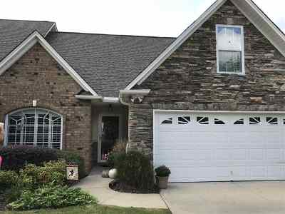 Spartanburg Single Family Home For Sale: 221 Stonecliff Way