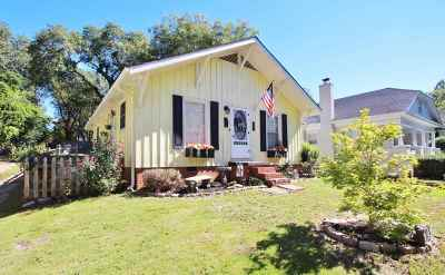 Spartanburg Single Family Home For Sale: 397 Mills Ave