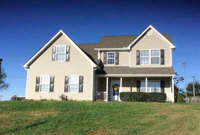 Greer Single Family Home For Sale: 14 Rayland Place
