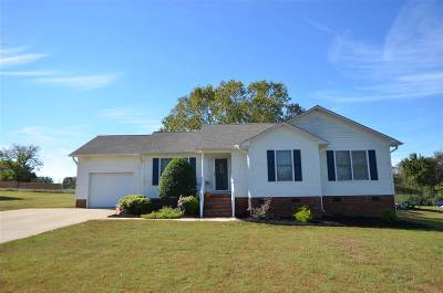Spartanburg Single Family Home For Sale: 3422 Stone Station Road