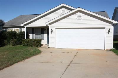 Spartanburg Single Family Home For Sale: 511 Wooden Duck Street