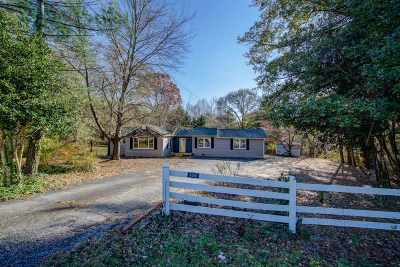 Spartanburg Single Family Home For Sale: S 4580 Pine St