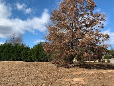 Inman Residential Lots & Land For Sale: 104 Weatherstone Court