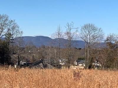 Inman Residential Lots & Land For Sale: 451 Gramling School Road
