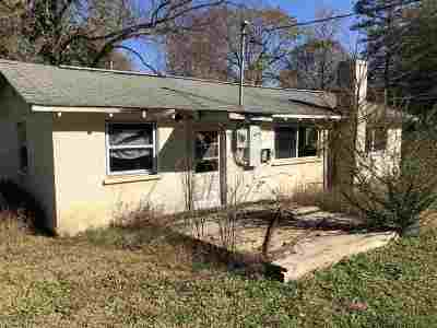 Greenville County, Spartanburg County Single Family Home For Sale: 18 Virginia Dr