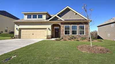 Duncan Single Family Home For Sale: 359 Tigers Eye Run