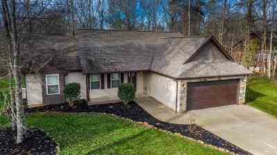 Easley Single Family Home For Sale: 300 Faye Circle