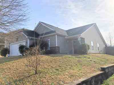Spartanburg Single Family Home For Sale: 667 Branch View Dr.