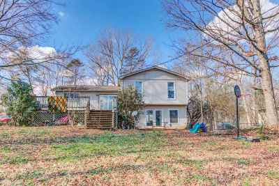 Greenville County Single Family Home For Sale: 234 Fernleaf Drive