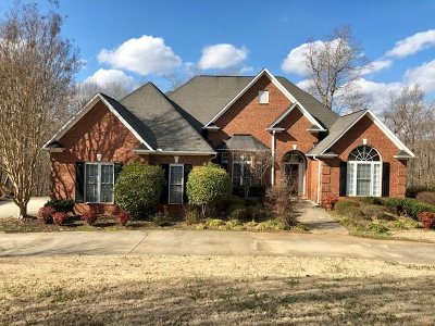 Spartanburg Single Family Home For Sale: 584 Old Iron Works Road
