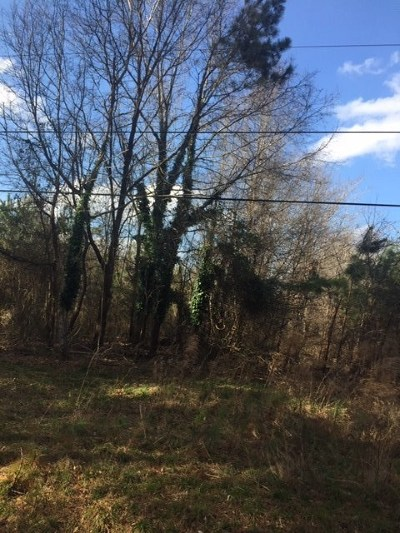 Spartanburg Residential Lots & Land For Sale: 550 Cotton Drive