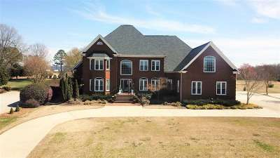 Greer Single Family Home For Sale: 224 Sandy Run Drive