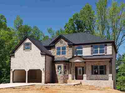 Simpsonville Single Family Home For Sale: 918 Willhaven Pl