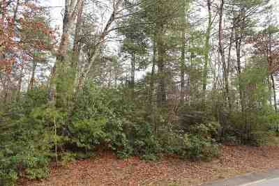 Travelers Rest Residential Lots & Land For Sale: 9 Laurel Cove Ln