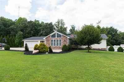 Spartanburg Single Family Home For Sale: 249 Saranac Drive