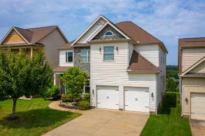 Spartanburg Single Family Home For Sale: 536 Serendipity Lane