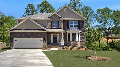 Duncan Single Family Home For Sale: 398 Tigers Eye Run