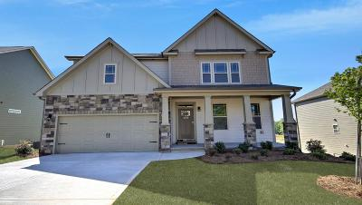 Duncan Single Family Home For Sale: 339 Tigers Eye Run