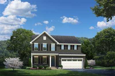 Greer Single Family Home For Sale: 207 Edwin Ellis Drive