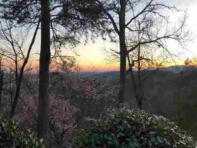 Travelers Rest Residential Lots & Land For Sale: 24 Hidden Mountain Way