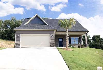 Greer Single Family Home For Sale: 129 Palmetto Valley Dr.