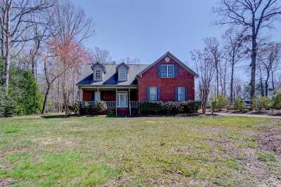 Spartanburg Single Family Home For Sale: 247 Hunters Pointe Dr