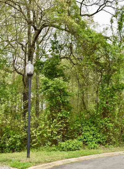 Campobello Residential Lots & Land For Sale: 265 Links Dr