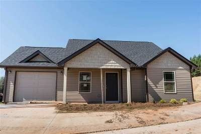 Greenville County Single Family Home For Sale: 33 Pamela Drive