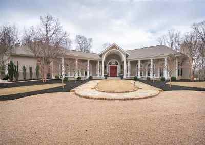 Simpsonville Single Family Home For Sale: 2378 Roper Mountain Road
