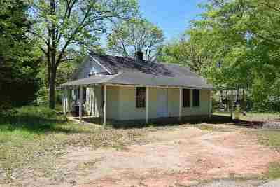 Greer Single Family Home For Sale: 554 Snow Street