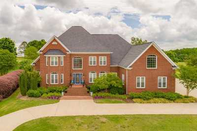 Greer Single Family Home For Sale: 224 Sandy Run Dr.