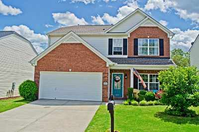 Greer Single Family Home For Sale: 410 Chartwell Dr