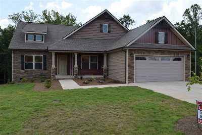 Chesnee Single Family Home For Sale: 532 Sedona Court