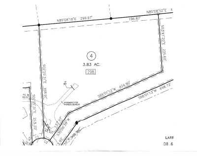 Campobello Residential Lots & Land For Sale: Lot 4 298 Lewis Rd