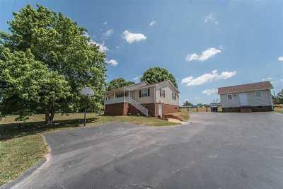 Greer Single Family Home For Sale: 4356 Skyland Drive