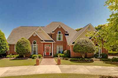 Greer Single Family Home For Sale: 244 Sandy Run Drive
