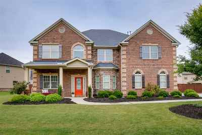 Simpsonville Single Family Home For Sale: 316 Montalcino Way