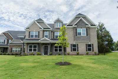 Simpsonville Single Family Home For Sale: 317 Tea Olive Place