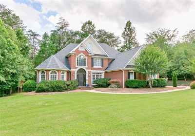 Spartanburg Single Family Home For Sale: 377 Hidden Creek Circle
